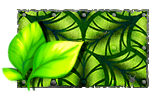 Paint tropical foliage.png