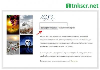 Tnk 2.jpg
